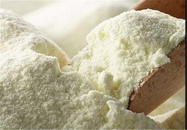 واردات شیرخشک به کشور منتفی شد/تولید داخل کافی است